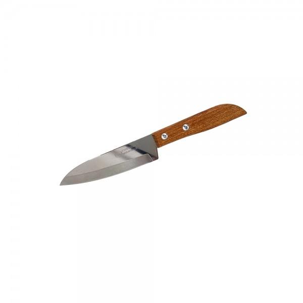 Obstmesser 10 cm Kiwi