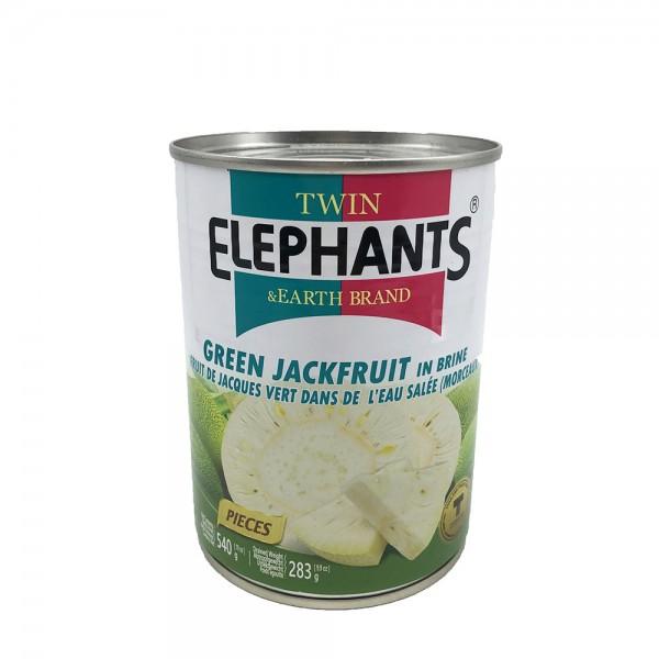 Grüne Jackfrucht in Salzwasser Twin Elephants & Earth 540g